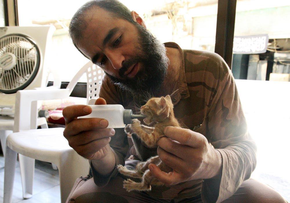 Rebelde do Exército Livre da Síria com gato