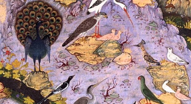 """Ilustração de """"A Conferência dos Pássaros"""".  Crédito Reprodução/""""The Canticle of the Birds"""""""